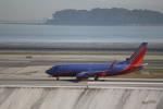 さもんほうさくさんが、サンフランシスコ国際空港で撮影したサウスウェスト航空 737-7H4の航空フォト(写真)