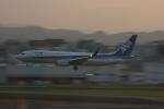 おがりょうさんが、福岡空港で撮影した全日空 737-881の航空フォト(写真)
