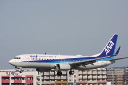 おがりょうさんが、福岡空港で撮影した全日空 737-881の航空フォト(飛行機 写真・画像)