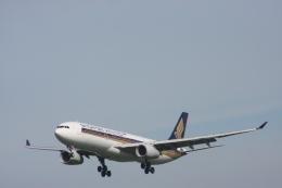 おがりょうさんが、福岡空港で撮影したシンガポール航空 A330-343Xの航空フォト(飛行機 写真・画像)
