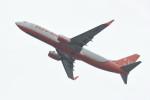 kuro2059さんが、関西国際空港で撮影したチェジュ航空 737-83Nの航空フォト(写真)