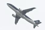 kuro2059さんが、関西国際空港で撮影したスターフライヤー A320-214の航空フォト(飛行機 写真・画像)