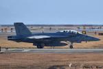 れんしさんが、岩国空港で撮影したアメリカ海軍 F/A-18F Super Hornetの航空フォト(写真)