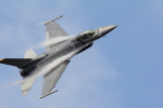 mukku@RJFKさんが、新田原基地で撮影したアメリカ空軍 F-16CM-50-CF Fighting Falconの航空フォト(写真)