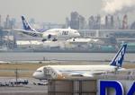 ふじいあきらさんが、羽田空港で撮影したボーイング 787-8 Dreamlinerの航空フォト(写真)