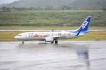 kumagorouさんが、新石垣空港で撮影した全日空 737-881の航空フォト(飛行機 写真・画像)