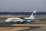 ☆ライダーさんが、成田国際空港で撮影したマレーシア航空 A380-841の航空フォト(写真)