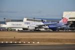 さくらの城南山。さんが、成田国際空港で撮影したチャイナエアライン A350-941XWBの航空フォト(写真)