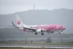 kumagorouさんが、新石垣空港で撮影した日本トランスオーシャン航空 737-8Q3の航空フォト(飛行機 写真・画像)