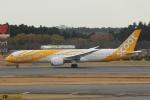 むこいちさんが、成田国際空港で撮影したスクート (〜2017) 787-9の航空フォト(写真)