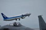 南国の防人さんが、那覇空港で撮影した全日空 737-881の航空フォト(写真)