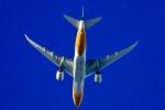 くれないさんが、徳島空港で撮影したスクート 787-8 Dreamlinerの航空フォト(飛行機 写真・画像)