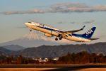 bestguyさんが、静岡空港で撮影した全日空 737-8ALの航空フォト(写真)