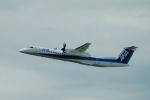 なまくら はげるさんが、中部国際空港で撮影したANAウイングス DHC-8-402Q Dash 8の航空フォト(写真)