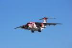 TADY BEARさんが、岐阜基地で撮影した航空自衛隊 C-1の航空フォト(写真)