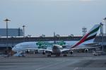 we love kixさんが、関西国際空港で撮影したエミレーツ航空 A380-861の航空フォト(写真)