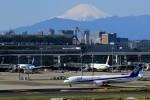 HNANA787さんが、羽田空港で撮影した全日空 787-9の航空フォト(写真)