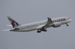 NIKEさんが、デンパサール国際空港で撮影したカタール航空 787-8 Dreamlinerの航空フォト(飛行機 写真・画像)