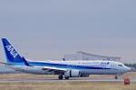 katsuura.Dさんが、徳島空港で撮影した全日空 737-881の航空フォト(写真)