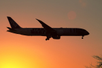 AkiChup0nさんが、成田国際空港で撮影した全日空 787-9の航空フォト(写真)