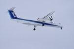 よんすけさんが、青森空港で撮影したANAウイングス DHC-8-402Q Dash 8の航空フォト(写真)
