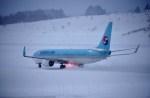 よんすけさんが、青森空港で撮影した大韓航空 737-9B5/ER の航空フォト(写真)