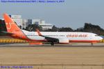 Chofu Spotter Ariaさんが、成田国際空港で撮影したチェジュ航空 737-83Nの航空フォト(飛行機 写真・画像)