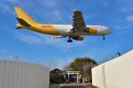 パンダさんが、成田国際空港で撮影したエアー・ホンコン A300F4-605Rの航空フォト(飛行機 写真・画像)