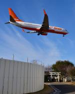 パンダさんが、成田国際空港で撮影したチェジュ航空 737-8ASの航空フォト(写真)