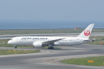 kuro2059さんが、関西国際空港で撮影した日本航空 787-8 Dreamlinerの航空フォト(写真)