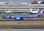 bluesky05さんが、羽田空港で撮影した中国東方航空 A330-343Xの航空フォト(写真)