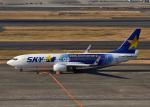 bluesky05さんが、羽田空港で撮影したスカイマーク 737-81Dの航空フォト(写真)