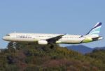 あしゅーさんが、福岡空港で撮影したエアプサン A321-231の航空フォト(写真)