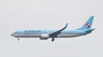 パンダさんが、成田国際空港で撮影した大韓航空 737-9B5/ER の航空フォト(飛行機 写真・画像)
