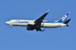 Izumixさんが、成田国際空港で撮影した全日空 737-881の航空フォト(写真)