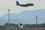 さちやちさんが、長崎空港で撮影した海上自衛隊 C-130Rの航空フォト(写真)