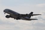 RAOUさんが、関西国際空港で撮影したシンガポール航空 A380-841の航空フォト(写真)
