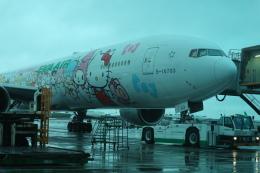 シフォンさんが、台湾桃園国際空港で撮影したエバー航空 777-35E/ERの航空フォト(写真)