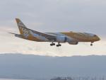 ガスパールさんが、関西国際空港で撮影したスクート 787-8 Dreamlinerの航空フォト(写真)