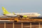 kaeru6006さんが、羽田空港で撮影したソラシド エア 737-86Nの航空フォト(写真)