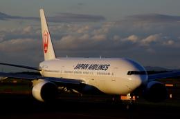 JA8943さんが、新千歳空港で撮影した日本航空 777-246の航空フォト(飛行機 写真・画像)