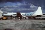 tassさんが、フォートローダーデール・ハリウッド国際空港で撮影したRenown Aviation 440-98 Metropolitanの航空フォト(飛行機 写真・画像)