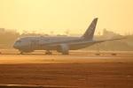 つっさんさんが、伊丹空港で撮影した全日空 787-8 Dreamlinerの航空フォト(写真)