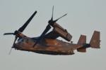 デルタおA330さんが、横田基地で撮影したアメリカ空軍 CV-22Bの航空フォト(写真)