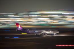 wtb11_ksさんが、羽田空港で撮影したハワイアン航空 A330-243の航空フォト(飛行機 写真・画像)