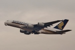 鉄バスさんが、関西国際空港で撮影したシンガポール航空 A380-841の航空フォト(写真)