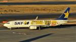 Ocean-Lightさんが、羽田空港で撮影したスカイマーク 737-8FHの航空フォト(写真)