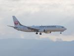 ガスパールさんが、関西国際空港で撮影した日本航空 737-846の航空フォト(写真)