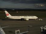 T_pontaさんが、新千歳空港で撮影した日本航空 767-346/ERの航空フォト(写真)