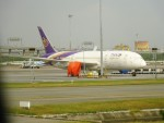 RUNWAY24さんが、スワンナプーム国際空港で撮影したタイ国際航空 787-8 Dreamlinerの航空フォト(飛行機 写真・画像)